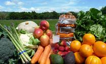 Fruit & Veg Box incl. Asparagus