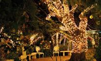 400 LED Solar Fairy Lights
